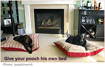 house pets dog beds